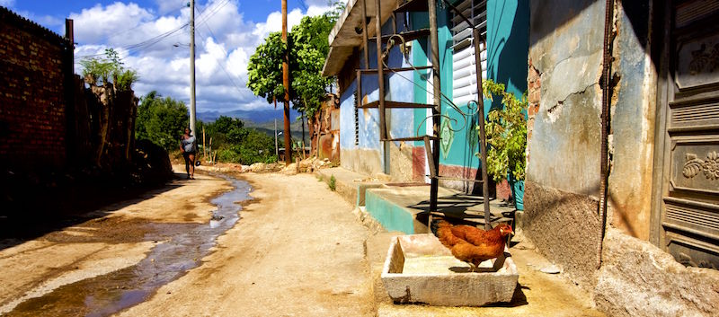 chicken on the street andrew zimmern travel quote