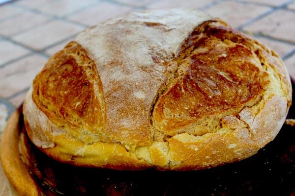 Pane di Altamura - What to eat and drink in Puglia - Quick Travel Guide to Puglia